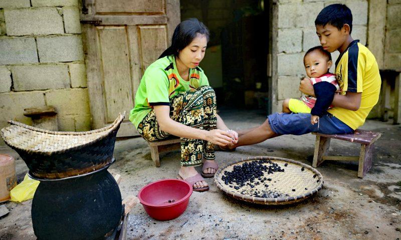 Przygotowywanie posiłku w Nong Khiaw w Laosie - ryż z żukami.