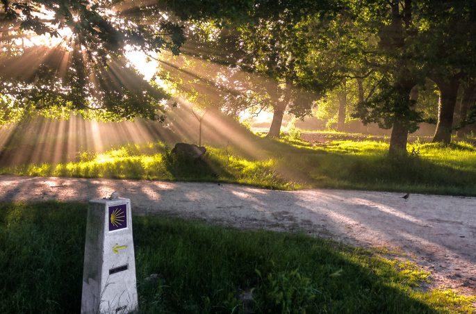 Wschód słońca na drodze świętego Jakuba. Onaczenia na szlakach. Buen Camino
