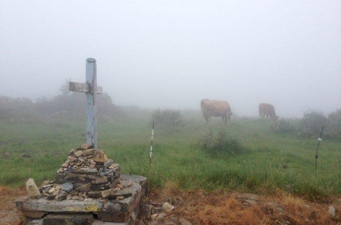Z Leon do Santiago. Szlakiem św. Jakuba - pogoda w Galicji