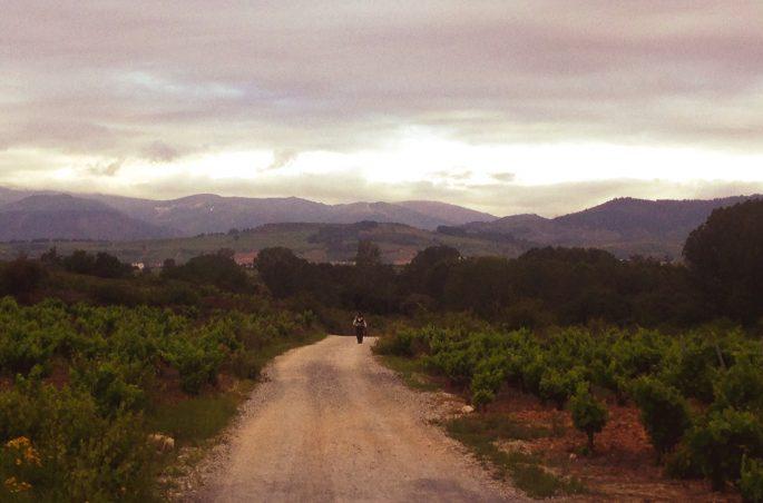 Z Leon do Santiago de Compostela - Camino de Santiago - Camino Frances