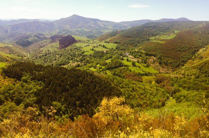 Widok na Camino de Santiago