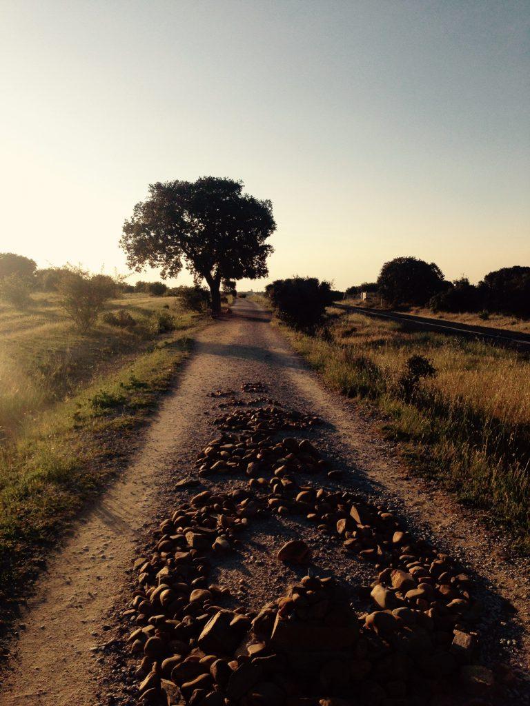 Camino de Santiago - pielgrzymka do Santiago de Compostela