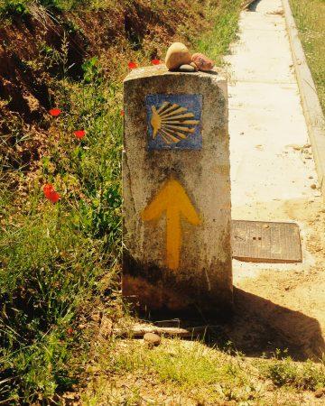 Oznaczenia na drodze do Santiago de Compostela