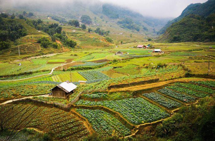 Trekking w Sa Pa (Vietnam)