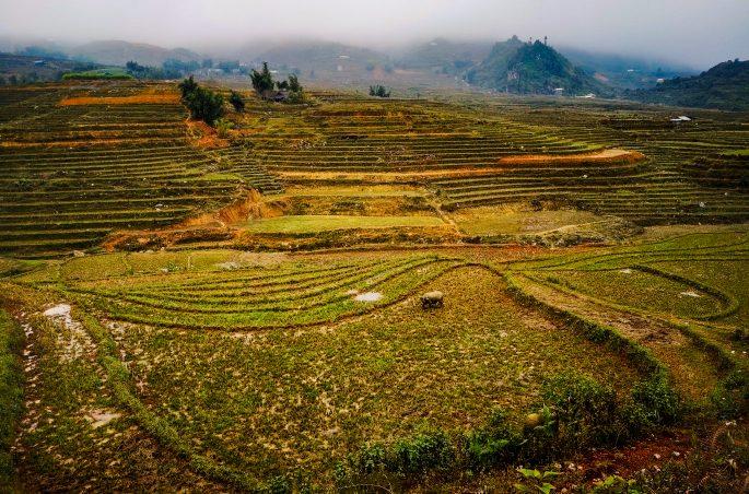 Trekking w Sa Pa Wietnam