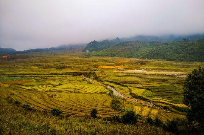 Sa Pa (Wietnam) w listopadzie - czy warto? Pogoda w Sa Pa - tarasy ryżowe - trekking w Sa Pa