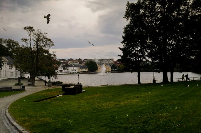 Jezioro Breiavatnet w centrum Stavanger. Lake Breiavatnet.
