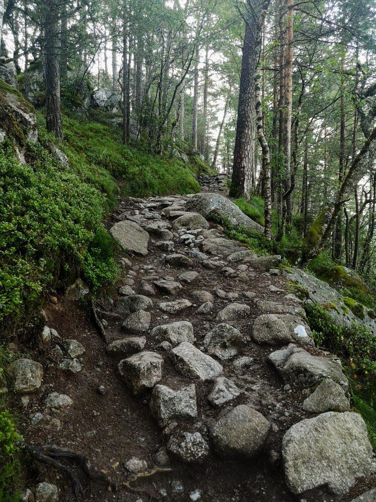 Szlak górski. Trekking w Norwegii
