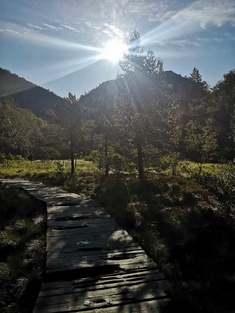 Szlak prowadzący na Preikestolen - sun and mountain