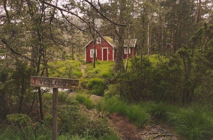 Domek w Norwegii. Zabudowa i architektura w Norwegii. Magiczny las. Preikestolen