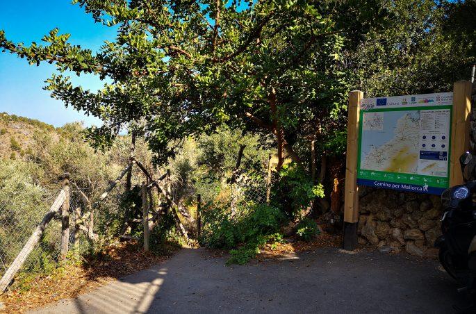 Wejście do ogrodu oliwnego