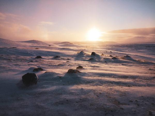 Pole lawy na Islandii. Lave field Iceland. Najpiękniejsze miejsca na Islandii. Islandia w marcu
